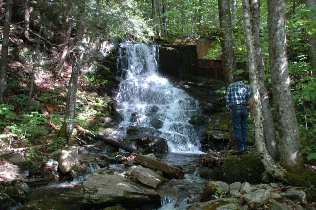 Forest Commission members, trails consultant Carl Demrow, and interested residents took a walk to Rollo Falls, recently donated to the town by Bob and Roberta Potter.