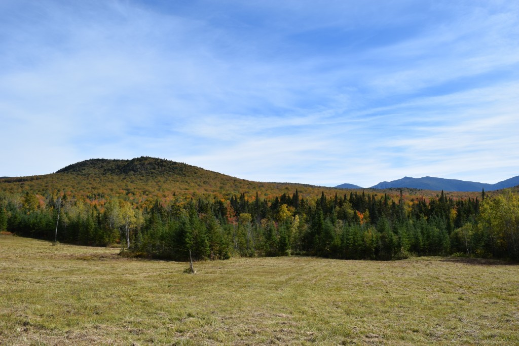 The Northern Peaks of the Presidential Range, seen in the distance from the Pond of Safety Road. (Photo by Edith Tucker.)